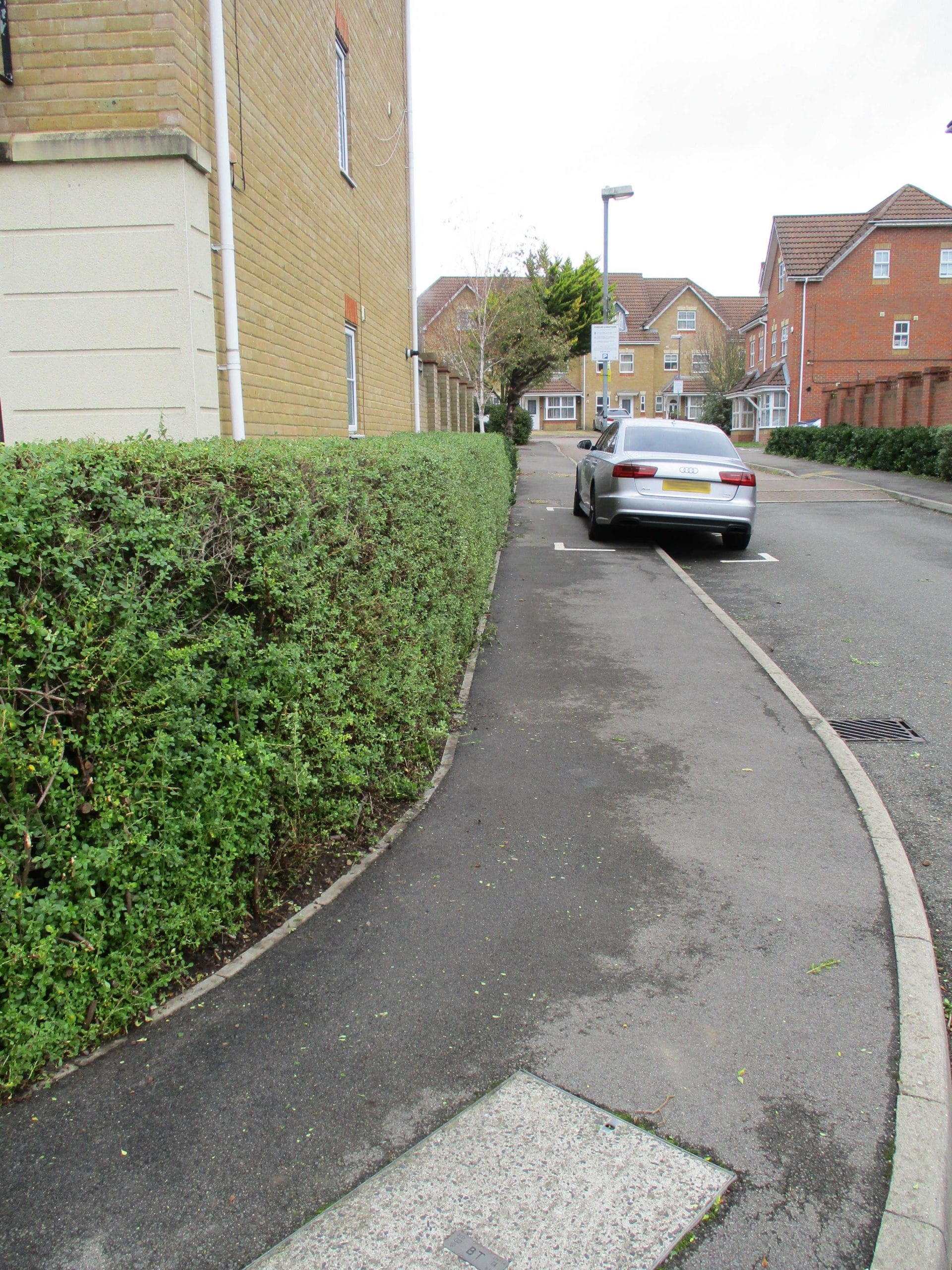 The hedge has recovered and is no longer blocking the footpath.