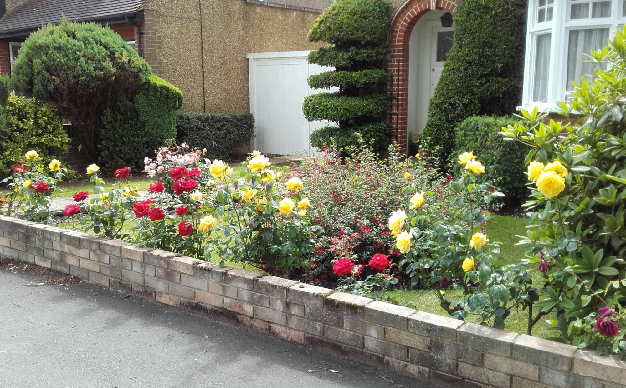 Domestic Garden Maintenance