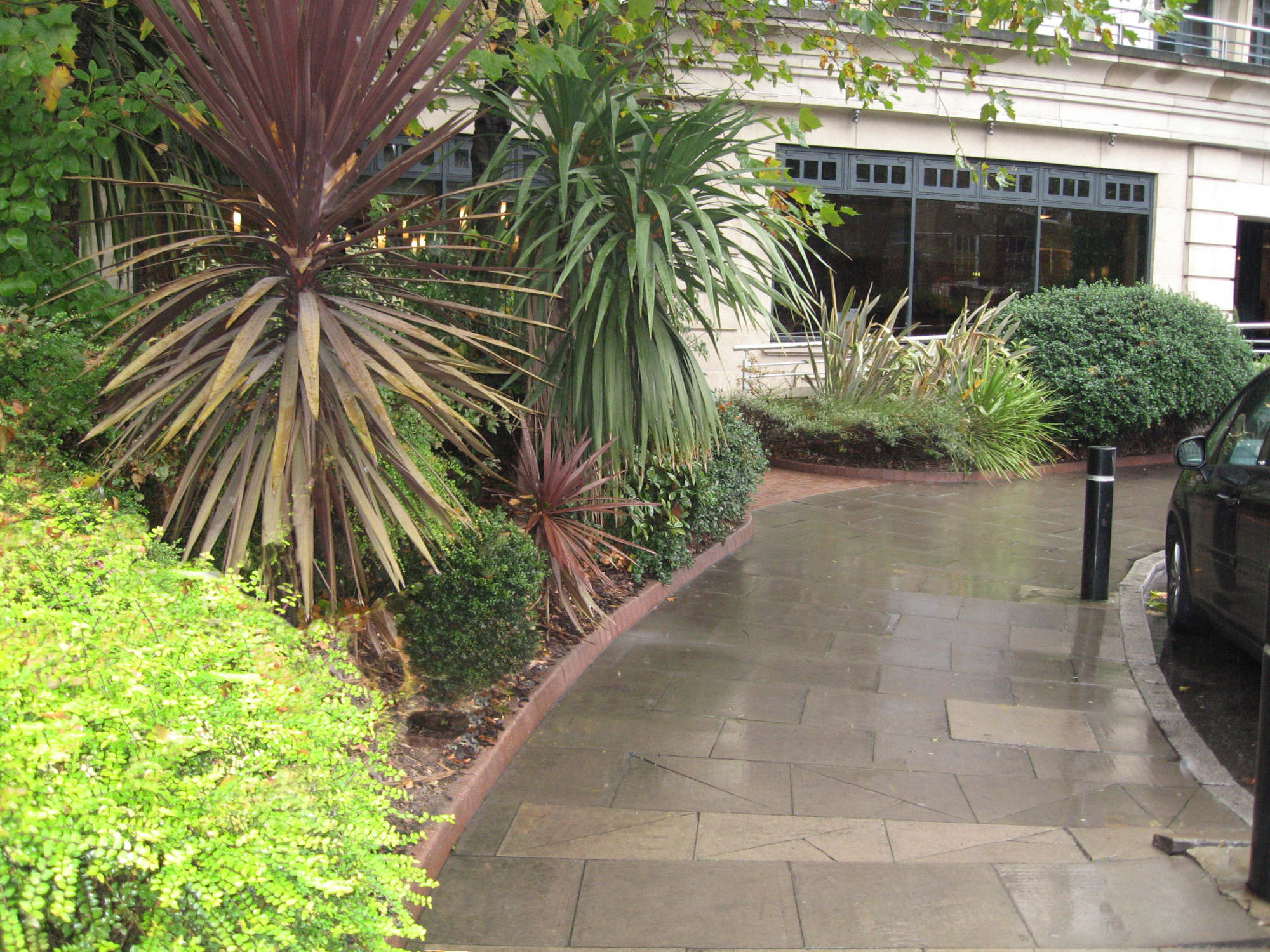 Commercial Hotel Grounds